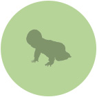 icon_green_baby